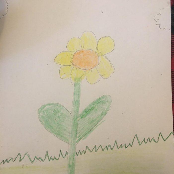 Sarissa Daffodil